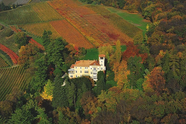 SAN LEONARDO - VERTICALE DI UN'ECCELLENZA ITALIANA