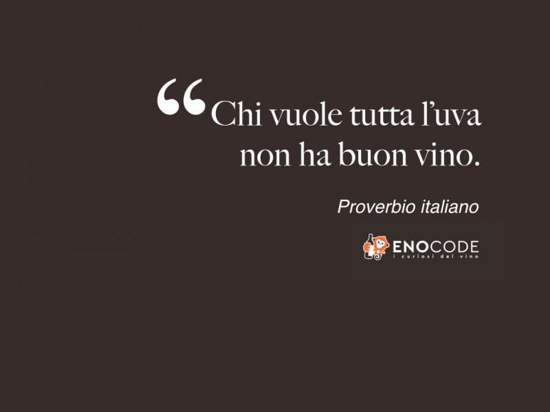 Chi vuole tutta l'uva non ha buon vino   Proverbio italiano