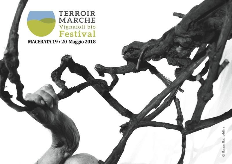 TERROIR MARCHE FESTIVAL 2018: TORNA IL FESTIVAL DEI VIGNAIOLI BIO MARCHIGIANI